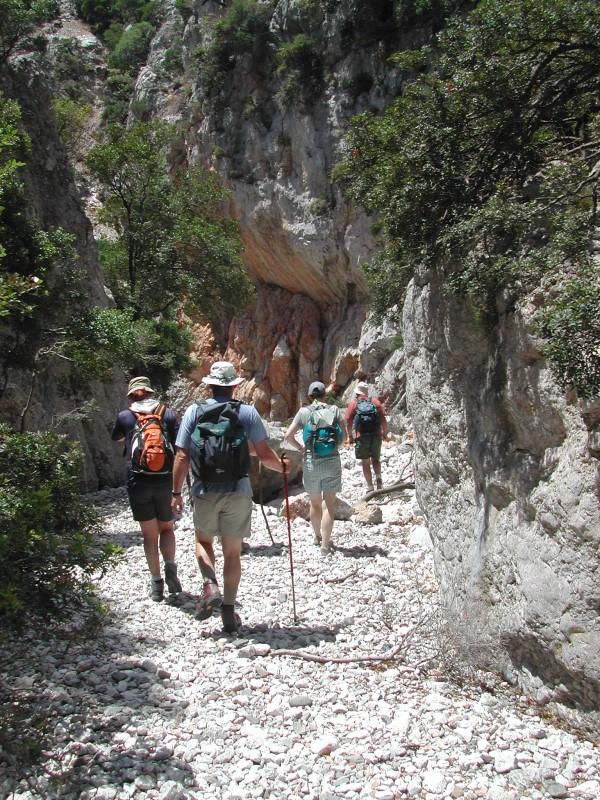 Hiking, Paradise, Alonissos, Alonnisos, Hotels
